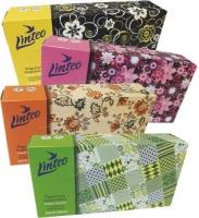 Kosmetické kapesníčky Linteo - v krabičce, dvouvrstvé, 100% celulóza, 100 ks