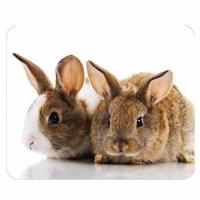 Podložka pod myš LOGO - PVC, 22x18 cm, 3 mm, králíčci