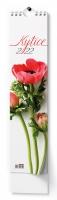 Nástěnný obrázkový kalendář - kravata, Kytice, 110x460 mm, měsíční