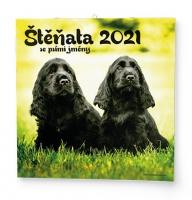 Nástěnný obrázkový kalendář - Štěňata, 285x285 mm, měsíční