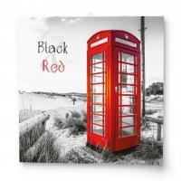 Nástěnný obrázkový kalendář - Black & Red, 285x285 mm, měsíční