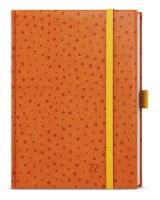Týdenní diář Prokop-vivella extra - B6, oranžový, puntíky