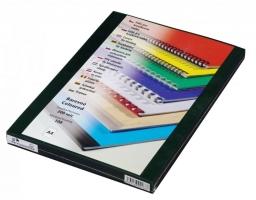 Přední strana kroužkové vazby Prestige - A4, 200 my, PVC, transparentní zelené, 100 ks